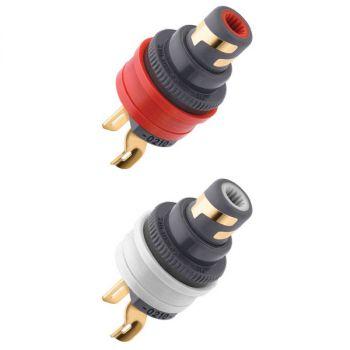 WBT-0210 Cu RCA input connector (showcase)