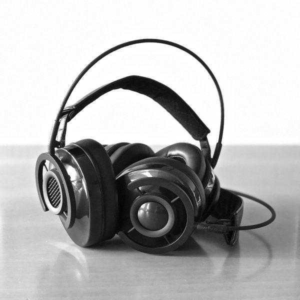 AudioQuest NightHawk en NightOwl Carbon