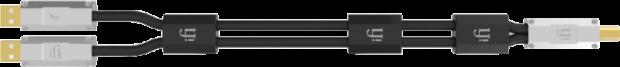 iFi USB Accessoires - iFi Gemini Dual Headed USB cable