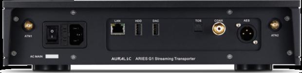 Auralic Aries G1 inputs