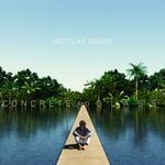 art's excellence Nicolas Godin